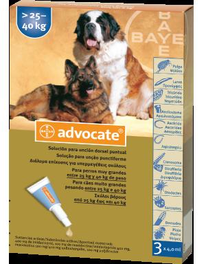 ADVOCATE spot-on για υπερμεγέθεις σκύλους >25-40kg